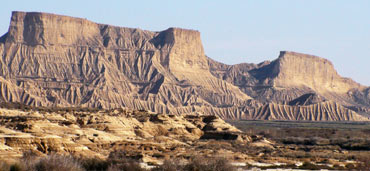 Birding in Navarra: The Bardenas Reales