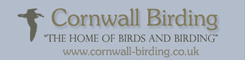 The home of birds and birding in Cornwall and the Isles of Scilly
