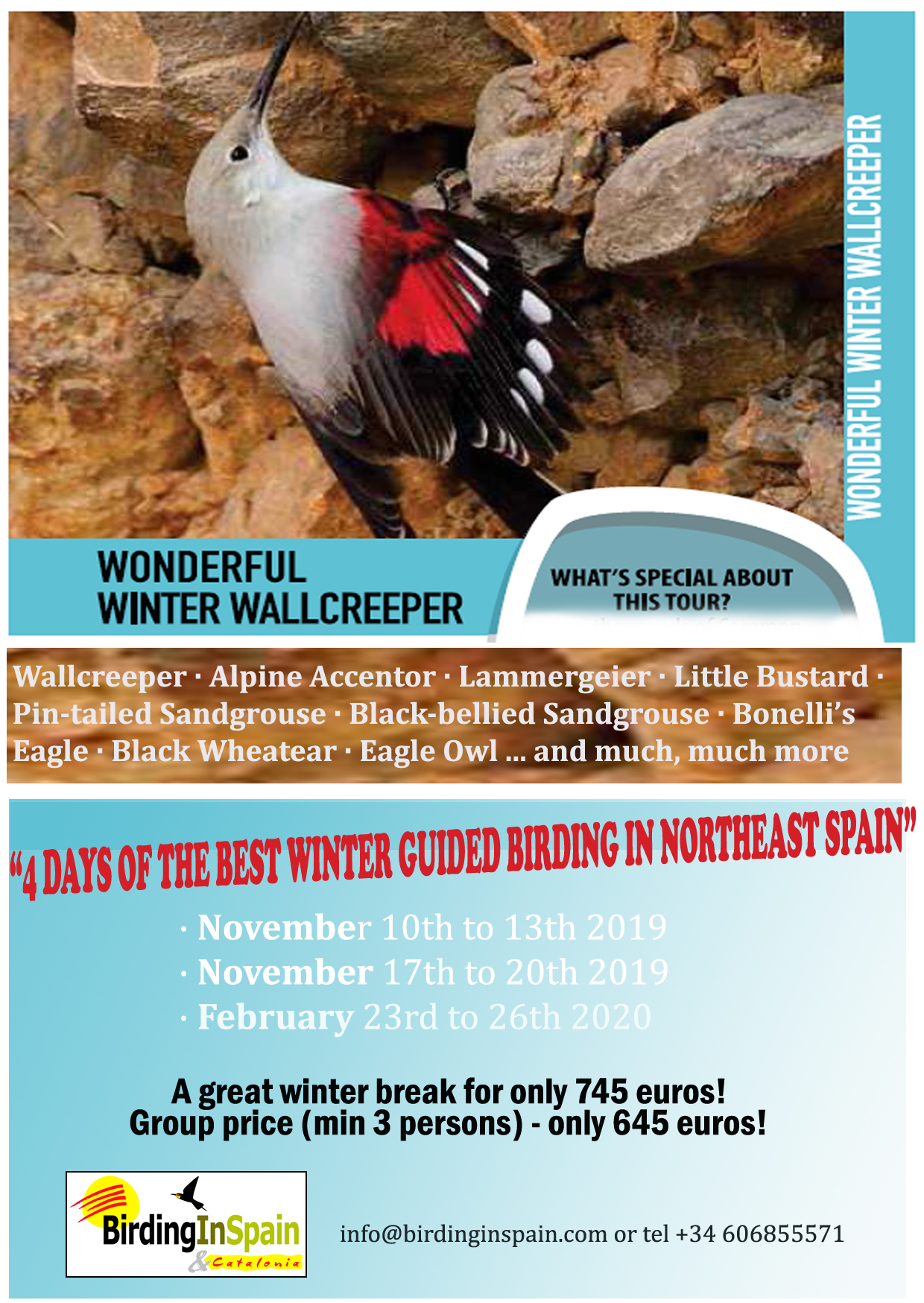Wonderful Winter Wallcreeper Tour