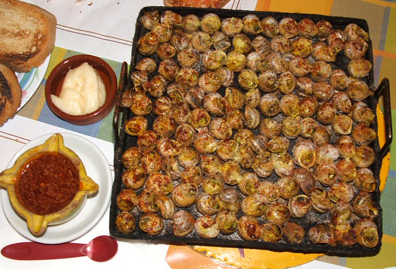 Griddled snails, Lleida.