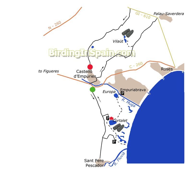 Birding in Aiguamolls del Empord Vilat Itinerary Sites and