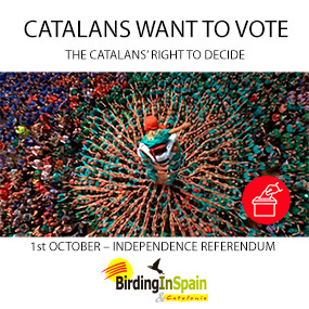 Catalans want to vote - The Catalans' right to decide