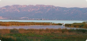 Encanyissada - The Ebro Delta