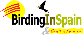 Logo of Birding in Spain website
