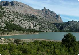 Birding and looking over the Cuber reservoir towards Puig Major.