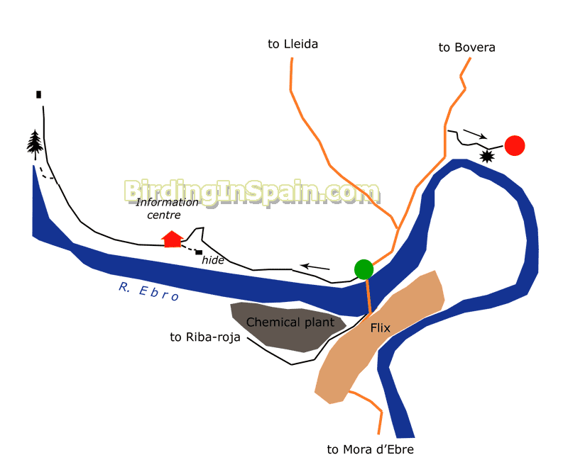 Map Of Spain Ebro River.Birding Along The River Ebro Sebes Nature Reserve Of Flix Itinerary
